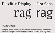 Top 10 Serif + Sans-Serif Font Combos on Google Fonts