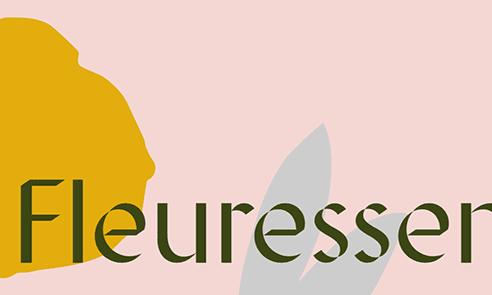 Displace Font Combinations & Free Alternatives · Typewolf